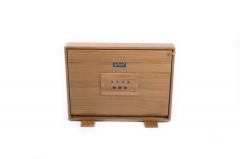 Shruti Box groß